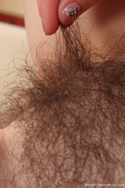 Смотреть волосатенькая онлайн